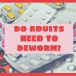 Do Adults Need To Deworm?